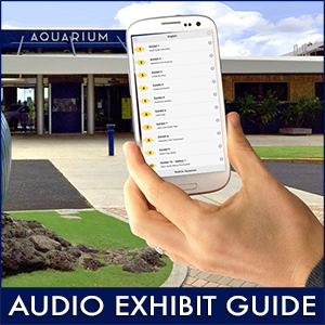 Audio Guide