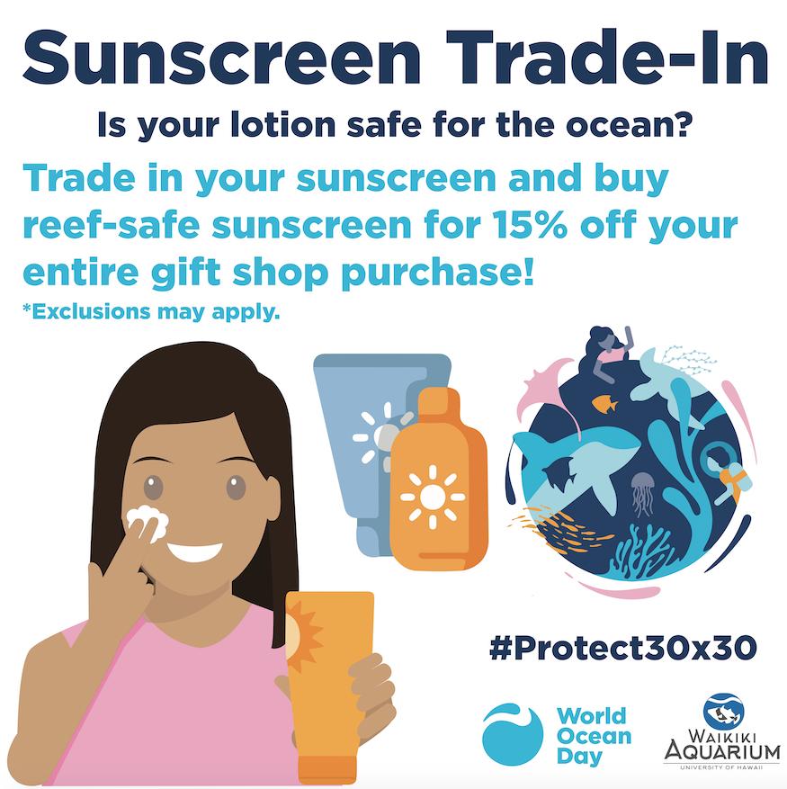 Sunscreen Trade in
