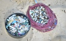 Beach Cleanup Plastic Pieces